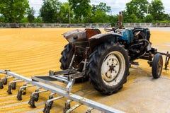 Risone con il trattore Immagine Stock Libera da Diritti