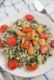 Risoto dos espinafres com tomates roasted fotos de stock royalty free