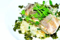 risotto άσπρων ψαριών και ρυζιού Στοκ Εικόνες