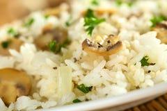risotto гриба Стоковое Фото