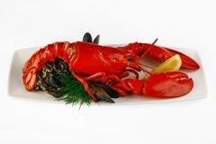 risotto плиты омара стоковое фото