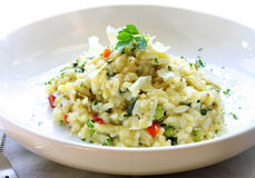 Risotto. Delicious risotto, topped with shaved parmesan cheese and parsley Stock Photography