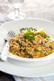 Risotto royalty free stock photo
