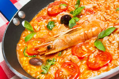 Free Risotto Royalty Free Stock Images - 38561929