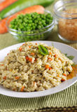 Risotto with assorted vegetables Stock Image