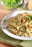 Risotto with assorted vegetables Royalty Free Stock Photography