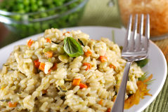 Risotto with assorted vegetables Stock Images