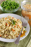 Risotto with assorted vegetables Stock Photography