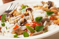 Risotto avec les champignons de couche et la viande de poulet Image libre de droits