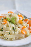 Risotto with carrots and fennel Royalty Free Stock Images