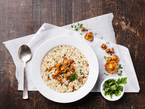 Risotto with chanterelles Royalty Free Stock Images