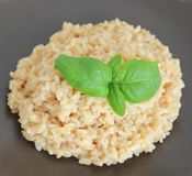Risotto with cheese. Some fresh italian risotto rice with cheese Royalty Free Stock Photo