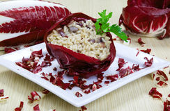 Risotto with cicory, radicchio Royalty Free Stock Photos
