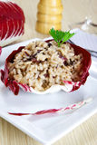 Risotto with cicory, radicchio Stock Photography