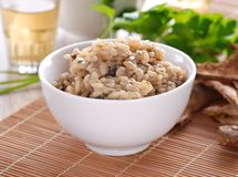 Risotto com cogumelos do porcini Fotos de Stock Royalty Free