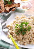 Risotto com cogumelos do porcini Imagem de Stock Royalty Free