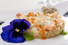 Risotto con le ostriche, il gamberetto e due salse di verdure Fotografia Stock