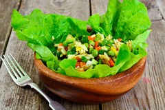 Risotto con le verdure, le carote, i piselli ed il pollo Fotografia Stock
