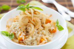 Risotto with crispy onions in whie bowl. Closeup Royalty Free Stock Photos
