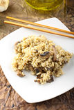 Risotto with fresh mushrooms Royalty Free Stock Photos