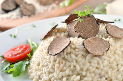 Risotto with fresh truffle stock photos