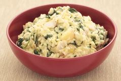 Risotto with haddock, leeks and spinach. A red bowl of haddock, leek and spinach risotto on a textured mat Royalty Free Stock Photo