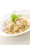 Risotto with italian meet Royalty Free Stock Photos