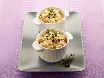 Risotto with juniper and thyme Royalty Free Stock Photography