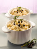 Risotto with juniper and thyme Royalty Free Stock Image