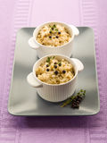 Risotto with juniper and thyme Stock Images