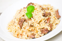 Risotto with liver Stock Image