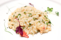 Risotto with lobster on plate Stock Photography