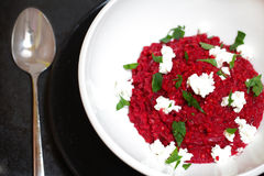 Risotto made of barley and beetroot with cottage cheese Stock Photography