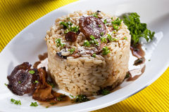 Risotto with mushroom Royalty Free Stock Images