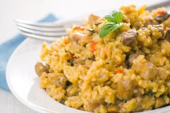 Risotto with mushroom Stock Images