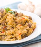 Risotto with mushroom Royalty Free Stock Photography
