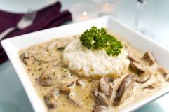 Risotto with mushroom sauce. In white plate with dinner background Royalty Free Stock Images