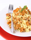Risotto with mushrooms Stock Image