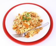 Risotto with mushrooms Royalty Free Stock Images