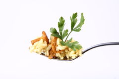 Risotto with mushrooms Royalty Free Stock Photography