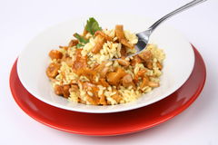 Risotto with mushrooms being eaten Stock Images