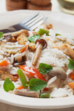 Risotto with mushrooms and chicken meat Royalty Free Stock Images
