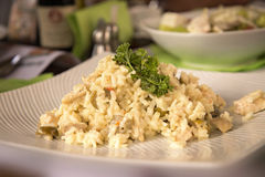 Risotto with mushrooms and chicken Royalty Free Stock Photos
