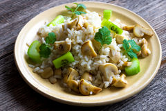 Risotto with mushrooms, coriander and celery Stock Photos