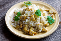 Risotto with mushrooms, coriander and celery Royalty Free Stock Image