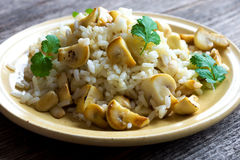 Risotto with mushrooms, coriander and celery Stock Image
