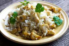 Risotto with mushrooms, coriander and celery Royalty Free Stock Photo