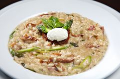 Risotto with mushrooms and dried tomatoes stock photos