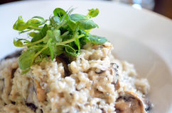 Risotto with mushrooms, fresh herbs and parmesan cheese.  Royalty Free Stock Image
