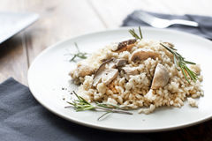 Risotto with mushrooms, herbs and parmesan cheese. Stock Photos